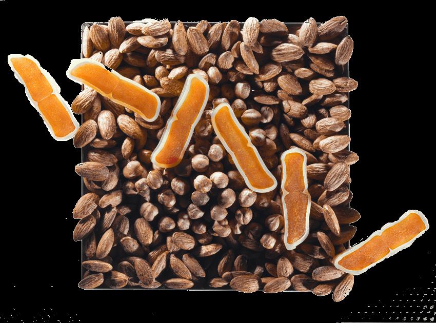 pour les gourmet en savoir plus sur la boutargue